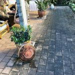 Cairns pressure cleaning tiles
